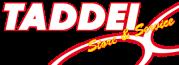 logo_taddei_1