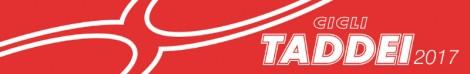 logo_taddei_2