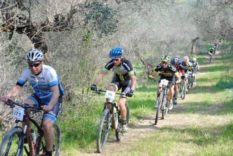Tour Ulivi 02042017 percorso