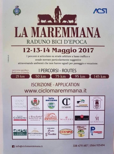 386-maremmana